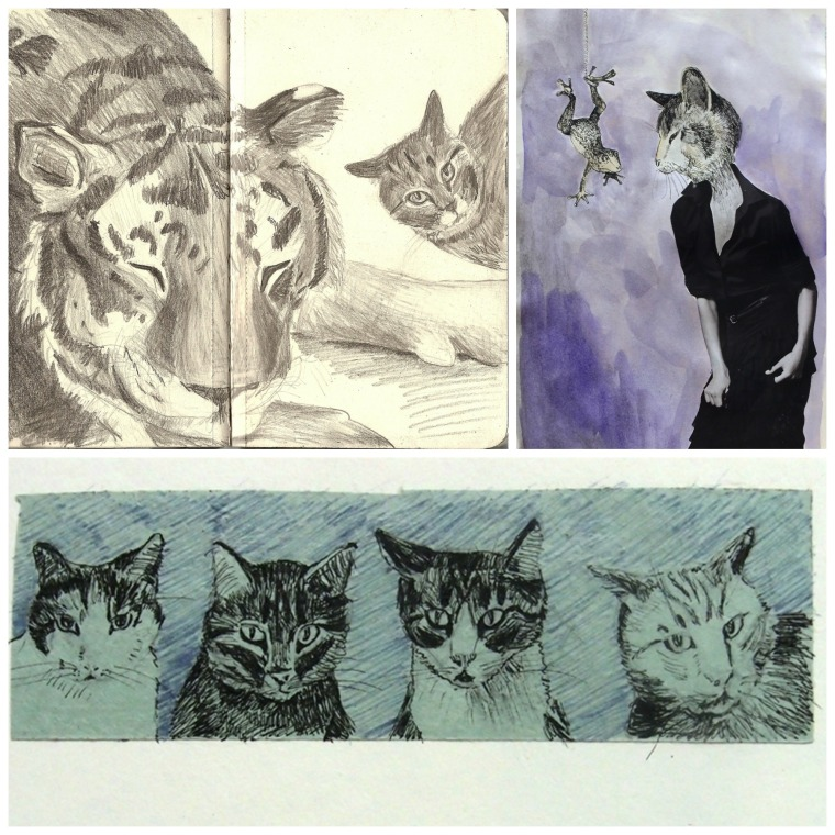 Cat drawings from sketchbooks