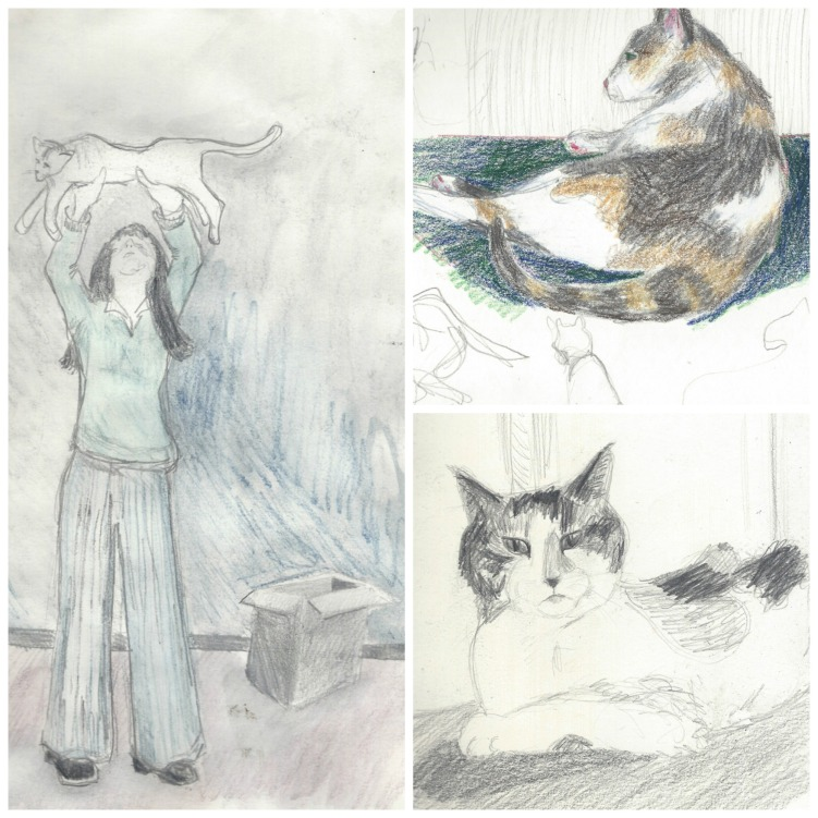 Drawings of cats by Carol Parker Mittal