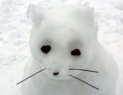 Melting snow cat